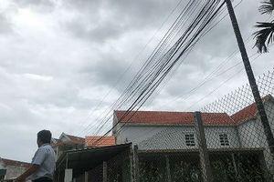 Báo động vi phạm hành lang lưới điện tai Quảng Ngãi