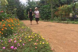 Đắk Lắk: Huyện Cư M'gar rực rỡ sắc màu đường hoa trong xây dựng NTM