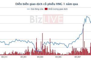 Tập đoàn HAGL đã gom xong 24 triệu cổ phiếu HAGL Agrico