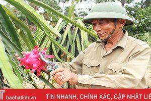 Nghi Xuân thành lập 680 mô hình kinh tế nông thôn mới