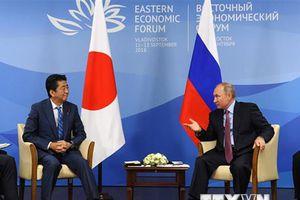 Thủ tướng Nhật Bản lên kế hoạch hội đàm với Tổng thống Nga