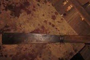 Thông tin mới nhất về vụ nghịch tử giết mẹ ruột ở Bắc Giang