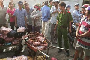 Nghiêm cấm mọi hành vi khai thác lợn lậu, vận chuyển lợn không rõ nguồn gốc