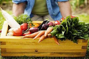Giải pháp thúc đẩy phát triển nông nghiệp hữu cơ