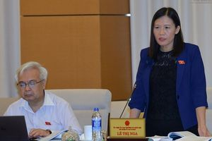 'Không nên đặt lại vấn đề cơ quan điều tra thuế'