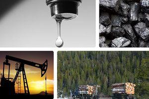 Những tài nguyên thiên nhiên hàng đầu sẽ sớm cạn kiệt