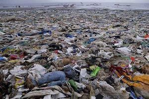 G7 bàn cách 'giải cứu' môi trường Trái đất
