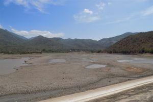 Ninh Thuận: Nhiều phương án sản xuất vụ mùa