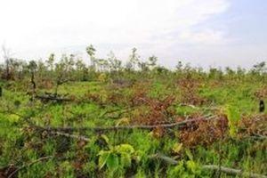 Đác Lắc: Kỷ luật Chủ tịch UBND xã Ea Bung