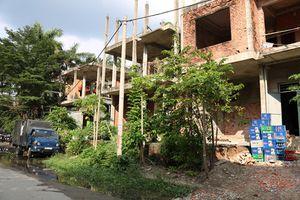Cảnh bất ngờ trong dãy biệt thự bỏ hoang giữa khu 'nhà giàu' TPHCM