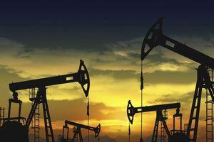 Giá dầu giảm nhẹ sau yêu cầu của Tổng thống Mỹ