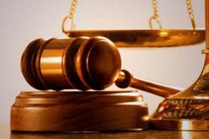 Dùng 32 tài khoản để 'thao túng' giá cổ phiếu KDM, lĩnh án phạt 550 triệu đồng