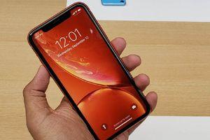 Điều gì khiến Apple kỳ vọng iPhone XR sẽ tạo đột biến về doanh số?