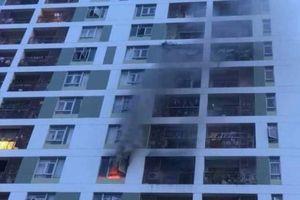 TP.HCM: 1 năm xảy ra hơn 1.000 vụ cháy, làm chết 26 người