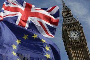 Nhiều lãnh đạo Châu Âu ủng hộ Anh tổ chức trưng cầu ý dân về Brexit