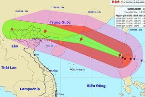 Bão Mangkhut không vào Việt Nam nhưng là cơ hội để diễn tập