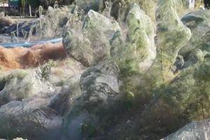 Bí ẩn mạng nhện khổng lồ nhuộm trắng bờ biển Hy Lạp