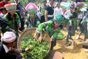 Lễ hội tôn vinh cây chè tổ Suối Giàng