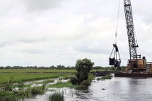 Các tỉnh đồng bằng sông Cửu Long chủ động ứng phó lũ, bảo vệ lúa