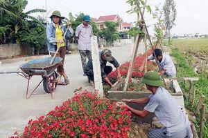 Người dân chung tay 'xây' những con đường hoa tươi rực rỡ