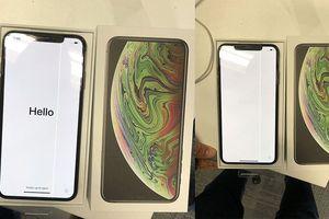 Giá hơn 2.000 USD nhưng iPhone XS Max vừa mở hộp đã lỗi sọc màn hình