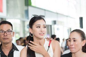 Chùm ảnh Hoa hậu Trần Tiểu Vy rạng rỡ ngày về thăm gia đình tại Hội An