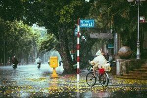 Discovery làm phim 24 phút quảng bá Việt Nam miễn phí