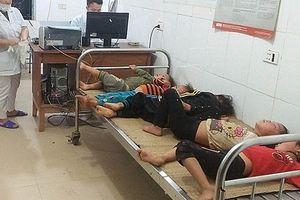 Ra đồng gặt lúa, 7 người bị ong đốt phải nhập viện khẩn cấp