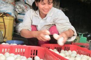Làm giàu '2 trong 1': Trên nuôi vịt, dưới nuôi cá, rủng rỉnh tiền tiêu