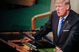 Tổng thống Trump và 'sàn diễn' New York