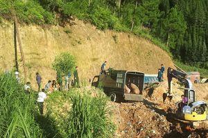 Tiêu hủy lợn vận chuyển trái phép qua biên giới Hà Giang