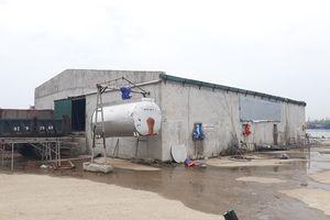 Nghệ An: Cảng cá Lạch Quèn bị xâm phạm nghiêm trọng