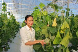 Người đàn bà xinh đẹp trồng rau công nghệ Isarel thu tiền tỉ mỗi năm