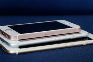 Màn hình quá to, iPhone mới có thể gây bất tiện đối với phụ nữ
