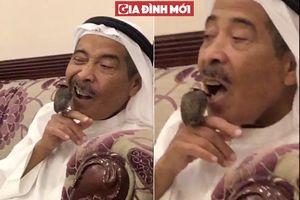 Clip Hài hước người đàn ông nhờ chú chim xỉa răng