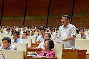 Đbqh Nguyễn Tạo - lâm đồng: cần có chính sách đột phá phát triển nông nghiệp công nghệ cao