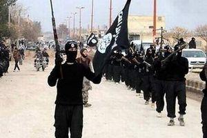 Dược sĩ người Anh tham gia IS bị giam giữ ở Syria