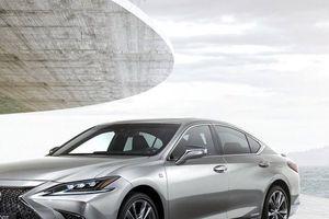 Lexus ES 2019 - Cuộc cách mạng của 'tiểu' LS