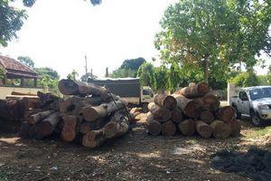 Đắk Nông: Bắt nguyên Đội trưởng Đội Kiểm lâm liên quan đến trùm gỗ lậu Phượng 'râu'