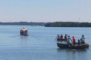 Hội An: Giải cứu cá heo bị thương dạt vào sông