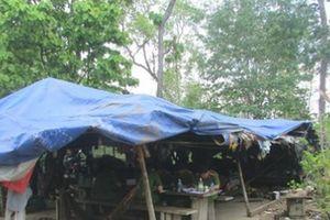 Vụ trùm gỗ lậu Phượng 'râu': Khởi tố Đội trưởng Kiểm lâm