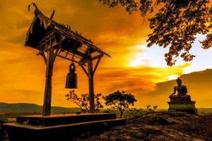 Chợt nhớ Phật Hoàng
