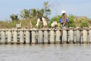 Áp dụng giải pháp kỹ thuật phòng chống sạt lở bờ sông, bờ biển vùng Đồng bằng sông Cửu Long