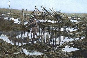 Thế chiến thứ nhất sống động qua những bức ảnh được tô lại màu