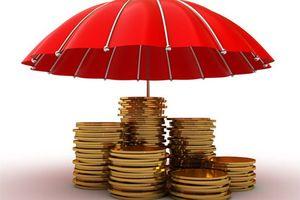 Bảo hiểm tiền gửi góp phần bảo đảm an toàn các quỹ tín dụng nhân dân