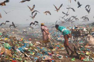 Loạt ảnh về môi trường khiến cả nhân loại phải suy ngẫm