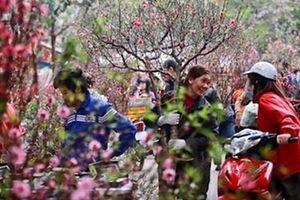Cán bộ, công chức Hà Nội nghỉ Tết Nguyên đán 9 ngày