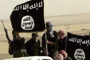 SNG: Tổ chức IS đang âm mưu thiết lập thành trì ở Trung Á