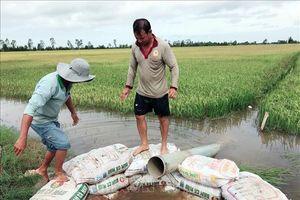 Sản xuất nông nghiệp trước biến đổi khí hậu – Bài 1