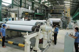 Lắp đặt dây chuyền sản xuất Nhà máy giấy Tân Mai Miền Đông
